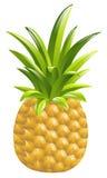 Ananasikonenillustration Stockfotos