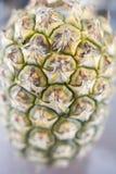 Ananasmuster Lizenzfreie Stockbilder