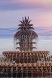 Ananasowa fontanna, Charleston, SC fotografia stock