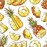 Ananasowy świeży pokrojony egzotyczny karmowy bezszwowy wzór ilustracja wektor