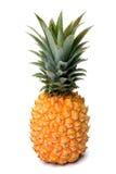 ananasowy kolor żółty Obraz Stock