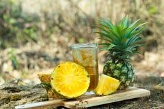 Ananasowy sok w lesie Zdjęcia Royalty Free