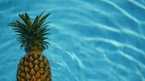 Ananasowy Unosić się W błękitne wody W Pływackim basenie Zdrowa Surowa żywność organiczna owoce soczysta tropikalny tło egzot zdjęcie wideo