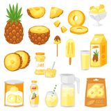 Ananasowy wektorowy świeży zdrowy Apple soku dżemu jogurtu i lody żółty naturalny ilustracyjny fruity set ilustracja wektor