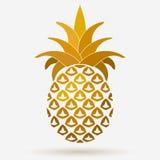 Ananasowy złoty owocowy projekta element, Tropikalny lata jedzenie Obrazy Stock