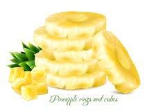 Ananasringe und -würfel Lizenzfreie Stockbilder