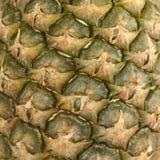 Ananasschale lizenzfreies stockfoto