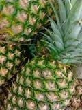 ananassen stock foto's