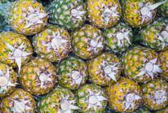 ananassen Stock Afbeelding