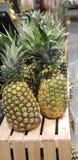 Ananassen bovenop het krat stock afbeeldingen