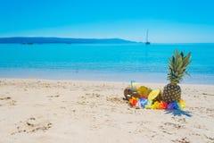 Ananassen en kokosnoten door de kust Royalty-vrije Stock Foto
