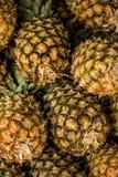 Ananassen op de markt Stock Afbeelding