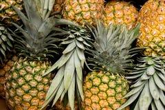 Ananassen op een rij gestapeld pina stock afbeelding