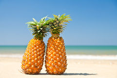 Ananassen op het strand Royalty-vrije Stock Foto