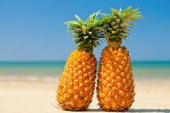 Ananassen op het strand Stock Foto's