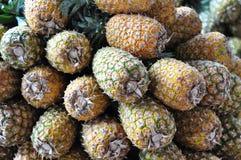 Ananassen voor verkoop in Costa Rica Stock Foto's