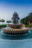 Ananasspringbrunn Arkivfoton
