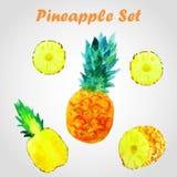 Ananasuppsättning Royaltyfria Bilder