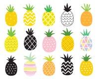 Ananasuppsättning royaltyfri illustrationer