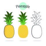 Ananasvektorsatz Illustration auf Weiß, flaches Design der Karikatur Stockbild
