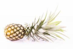 Ananasvitbakgrund Arkivfoton