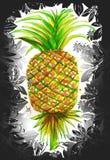 Ananaswasserfarbmalerei und -hintergrund blühen Grafik-DES Stockbild