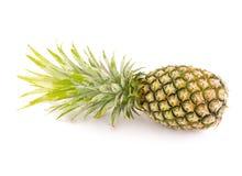 Ananasweiß auf Hintergrund Lizenzfreies Stockfoto