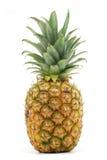ananasy Zdjęcie Royalty Free