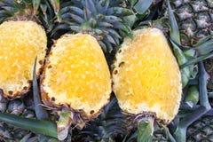 Ananasy Fotografia Royalty Free