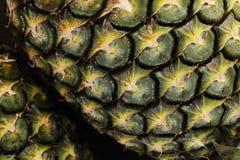 ananasy Fotografia Stock