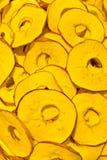 ananasy obraz stock