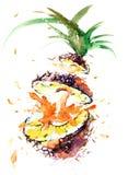 ananasy Ilustracja Wektor