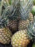 Ananasy dla sprzedaży Obrazy Stock