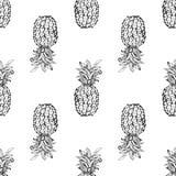 ananasy egzotyczne owoce tropikalne nakreślenie wzór obraz stock