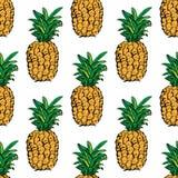 ananasy egzotyczne owoce tropikalne nakreślenie wzór obrazy royalty free
