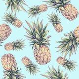 Ananasy na bławym tle Akwareli colourful ilustracja owoce tropikalne bezszwowy wzoru Obrazy Royalty Free