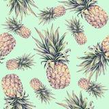 Ananasy na jasnozielonym tle Akwareli colourful ilustracja owoce tropikalne bezszwowy wzoru Zdjęcia Stock