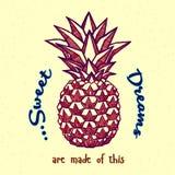 ananasy Pociągany ręcznie atrament ilustracja Fotografia Stock