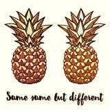 ananasy Pociągany ręcznie atramentu wektoru ilustracja Zdjęcie Royalty Free