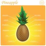 Ananaszusammensetzung Stockfotografie