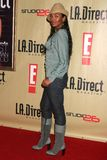 Ananda Lewis. At the Remember To Give Holiday Party hosted by L.A. Direct Magazine, E! Network and Ronald McDonald Charities. Les Deux, Hollywood, CA. 12-13-07 stock photos