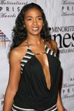 Ananda Lewis. At the 10th Annual Multicultural Prism Awards Gala. Hilton Hotel, Universal City, CA 12-15-05 royalty free stock images