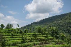 Ananpurna pasmo górskie, Nepal fotografia royalty free