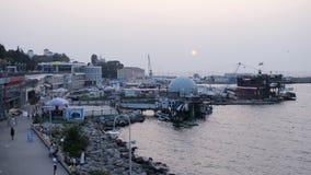 ANAPA, РОССИЯ - 29-ОЕ ИЮЛЯ 2016: морской порт в курортном городе Anapa сток-видео