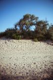 Anapa beach, Russia Royalty Free Stock Photos