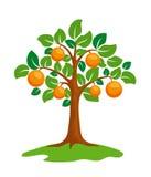 Anaranjado-árbol stock de ilustración