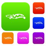 Anarhichas fish set collection. Anarhichas fish set icon in different colors isolated vector illustration. Premium collection Royalty Free Stock Photography