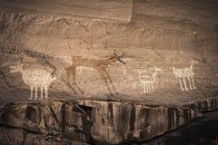 Anasazi petroglyphs som föreställer djur i den Chelly kanjonen - Royaltyfri Fotografi
