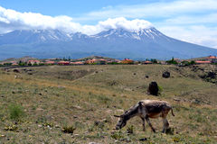 anatolië Stock Foto