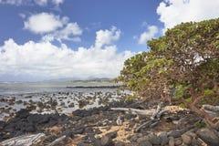 Anatolia Beach, paisagem de Kauai Fotos de Stock Royalty Free